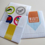 merit badge 2